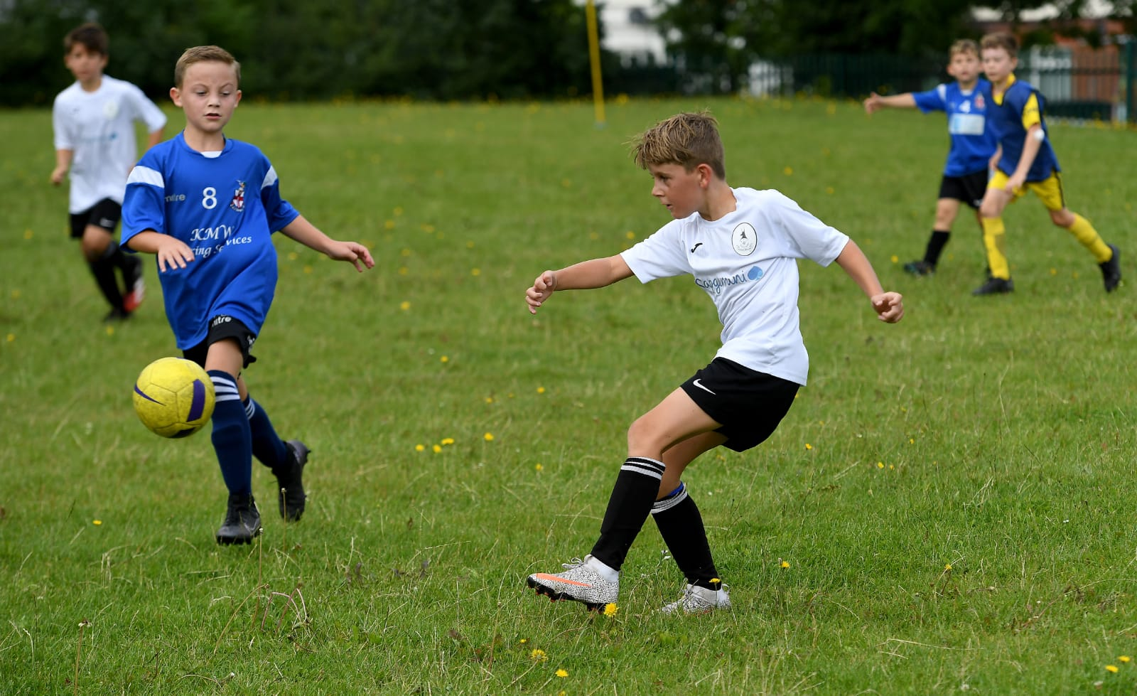 Youth Round-Up